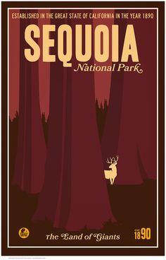 Sequoia National Park by Matt Brass