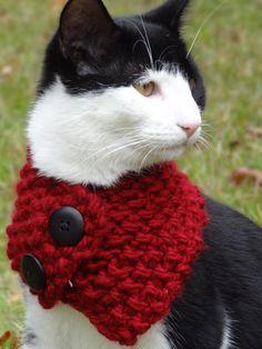 Custom Cat Dog Pet Scarf Cowl Bandana Winter Accessories Photography Prop