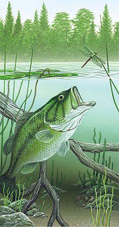 Largemouth Bass painting by Dan Waltz