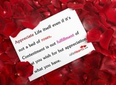 Appreciate Life Itself Even If It's Not A Bed Of…