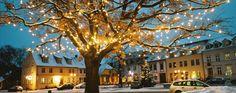 #Marktplatz von #Werder (Havel) an einem #Winterabend #Weihnachtsmarkt www.werder-havel.de