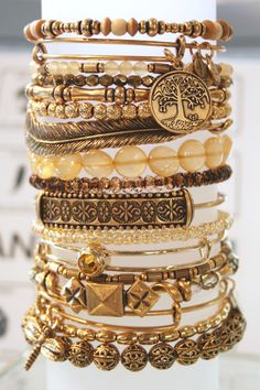 gold_stack_alex_and_ani