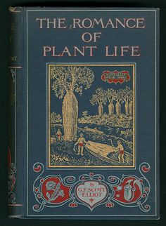 The romance of plant life: interesting descriptions of the strange and curious in the plant world