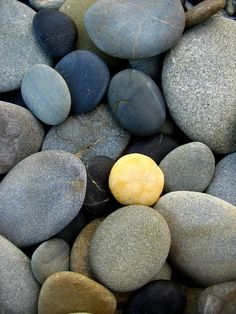 The multi-coloured pebbles on New Aberdour beach the result of glacial deposits which form some of the soft sandstone / composite rock found at this location.