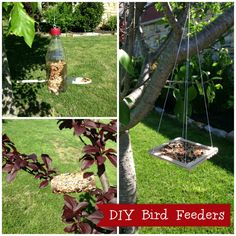 Cub Scouts: Easy Bird Feeders For Kids