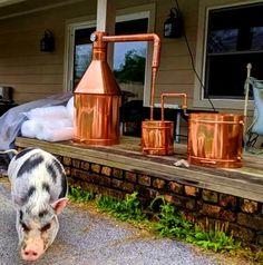 Homemade Moonshine, How To Make Moonshine, Moonshine Stills For Sale, Home Distilling, Barrels For Sale, Copper Moonshine Still, Whiskey Still, Cool Kitchen Gadgets, How To Make Beer