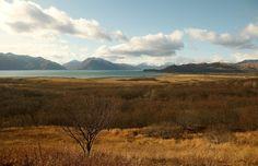 Ugak Bay, Kodiak, Alaska