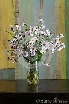 Cosmos Flowers Bouquet in Glass Vase Bunch on Dark Background
