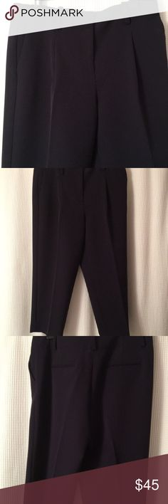 Midnight Blue Petite ankle pants Petite ankle trousers. Better than navy blue there're midnight. ( a little purplish ) Slit side pockets belt loops and back flat pockets. NWT Tag marked 12P but pants say 10P They are 10P never worn I need 12P Ann Taylor Pants Ankle & Cropped