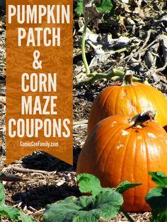 Cool Patch Pumpkins Coupon Video Games Deals Black Friday