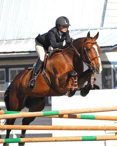 #motivation #horsebackriding #horsebackridinglessons #richmond #vancouver #vancity