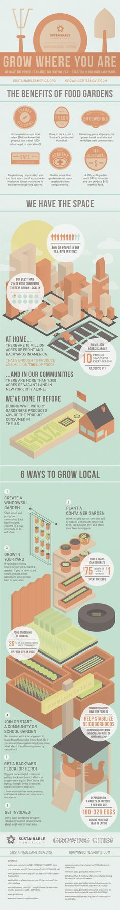 Grow Where You Are #gardening #infographic