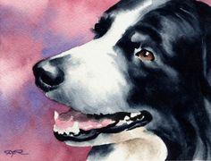 BORDER COLLIE Dog Art Print Signed by Artist DJ by k9artgallery, $12.50
