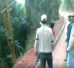 """Virales Video """"Dumme Menschen und ihre Unfälle"""" mit über 23 Millionen Klicks"""