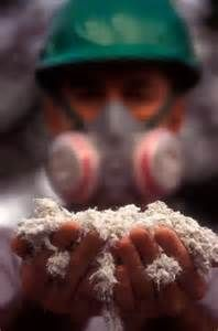 asbestos cancer - Yahoo Image Search Results