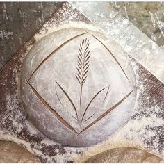 Artisan Bread Recipes, Sourdough Recipes, Sourdough Bread, Baking Recipes, Artisan Boulanger, Bread Shaping, Bread Art, Bread Rolls, How To Make Bread