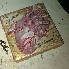 anatomical heart mix