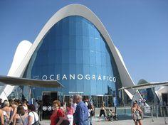 El Oceanografico = the biggest aquarium in the continent of Europe.   Valencia, Spain