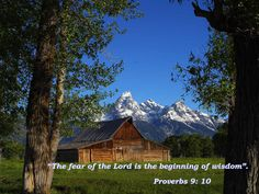 """The fear of the LORD is the beginning of wisdom, and knowledge of the Holy One is understanding. 9:10"