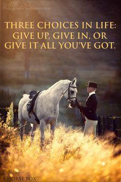 Amen! #life #quote #horse     Model - Simone Tiplady Aspire Performance Horses     Horse Model - Almontasir Desert Starr (Purebred Arabian Gelding)