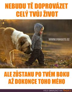 Nebudu tě doprovázet celý tvůj život Dog Quotes, Bible Quotes, English Words, I Love Dogs, Motto, Quotations, Traveling By Yourself, Texts, Real Life