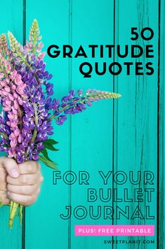 50 Gratitude Quotes for Your Bullet Journal or Planner to feel happy every day! FREE PDF Printable, too! Bullet Journal Contents, Bullet Journal Ideas Pages, Bullet Journal Inspiration, Bullet Journals, Appreciate What You Have, When You Love, Gratitude Changes Everything, Good Attitude, Gratitude Quotes