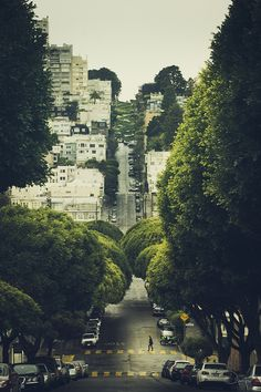 """velophoto:  evocativesynthesis:  Lombard street - San Francisco (by Danilo Fermata)  a deviation from my usual """"roads to ride"""" theme. I hate city traffic, polluted air and stuff - but this looks cool enough in my book and hey, it's SF ;-)"""