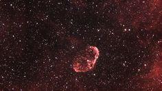 Crecent Nebula HSO 2h NGC 6888 Pentax 105sdp | zwo asi 1600MM-c | AZ EQ6 GT