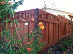 Image result for plants on redwood fence