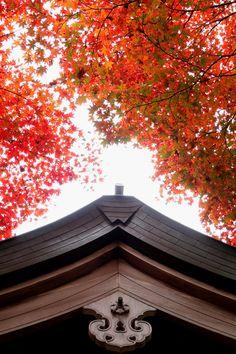 the roof detail of Torii Kannon temple in Saitama, Japan 鳥居観音
