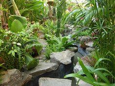 tropical garden pond in thailand