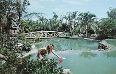 Tiki Gardens | Critiki