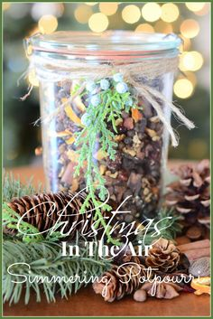 HOLIDAY SIMMERING POTPOURRI is a natural way to create a holiday fragrance in your home without chemicals or sprays or candles. Intoxicating!