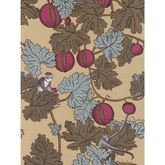'Frutto Proibito' by Cole & Son, my dream wallpaper - monkeys hiding in a pomegranate tree, gold background, based on a famous fabric. Neutral Wallpaper, Accent Wallpaper, Luxury Wallpaper, Tree Wallpaper, Wallpaper Online, Custom Wallpaper, Designer Wallpaper, Transitional Wallpaper, Casa Milano