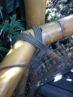 To tether the bamboo...