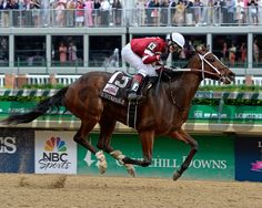 Untapable with Rosie Napravnik wins the Kentucky Oaks at Churchill Downs in Louisville, Ky., on May 2, 2014 Photo by Anne M. Eberhardt
