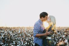 Pictures in a cotton field?! Country fabulous! I want to do this!