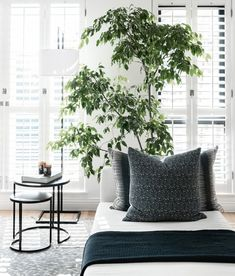 The Private House Company: The Indoor Collections - SA Decor & Design Decor, Weather Resistant Furniture, Decor Design, Cool Rooms, Interior Spaces, White Decor, Stylish Decor, Interior Design Blog, Gray White Decor