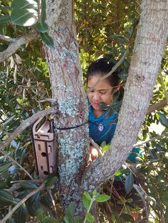 Students placed their newly designed wētā houses in various locations around Auckland. They want to find out if this house better suits wētā needs. Primary School, Auckland, Science And Technology, Investigations, How To Find Out, Students, College, Houses, Teaching