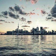 #Repost @missviexo  There's no place like home #Toronto #Home #The6ix #6God