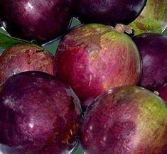 List of Fruit Trees   Caimito is a Star Apple tropical fruit flavor makes great smoothies