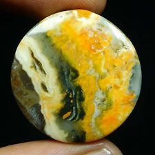 26.45Cts. 100% NATURAL DESIGNER BUMBLE BEE JASPER Round CABOCHON LOOSE GEMSTONES