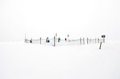 "Although spring is (finally) here, I cannot help but go back to Akos Major's work. The simplicity of his landscape series, titled ""Lumen"", is breathtakingly Minimal Photography, Contemporary Landscape, Kingfisher, Landscape Architecture, Around The Worlds, Winter, Places, Outdoor, Image"