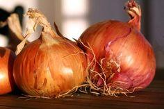 Les bienfaits des oignons et de l'ail