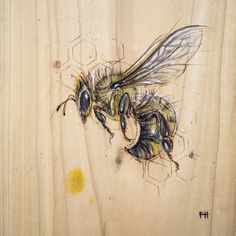 Bee#5, Fay Helfer