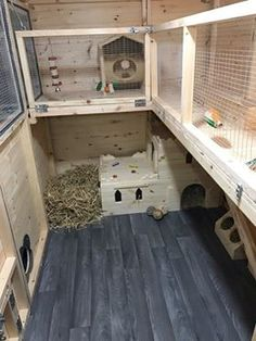 Instant Access to Woodworking Plans and Projects – TedsWoodworking Inside Of a Huge Rabbit Shed. Handmade By Boyles Pet Housing (Boyles Pet Housing did not make the accessories in the photo) Bunny Sheds, Rabbit Shed, Rabbit Run, House Rabbit, Rabbit Toys, Bunny Rabbit, Rabbit Treats, Bunny Cages, Rabbit Cages
