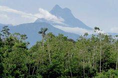 Pico da Neblina   Divulgação/ICMBio