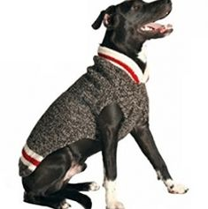 Chilly Dog Boyfriend Dog Sweater, X-Large Big Dogs, Small Dogs, Costume Chien, Large Dog Sweaters, Pet Sweaters, Chilly Dogs, Knit Dog Sweater, Wool Cardigan, Dog Jumpers