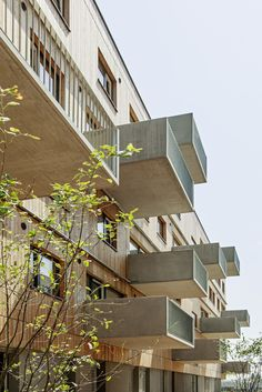 The complex with a total of 213 apartments and eight shops apparently consists of a group of clearly recognisable individual timber houses in the form of slender, compact individual volumes.