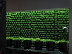 Verde Profilo – Centro benessere
